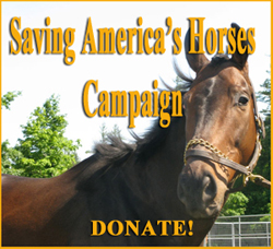 Donate to this Campaign!