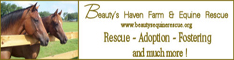 Beayty Haven Rescue