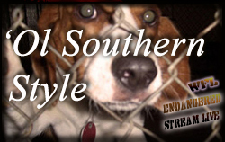 'Ol Southern Style Banner