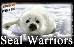 Seal Warriors BNR