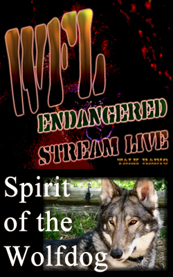 Spriti of the Wolfdog